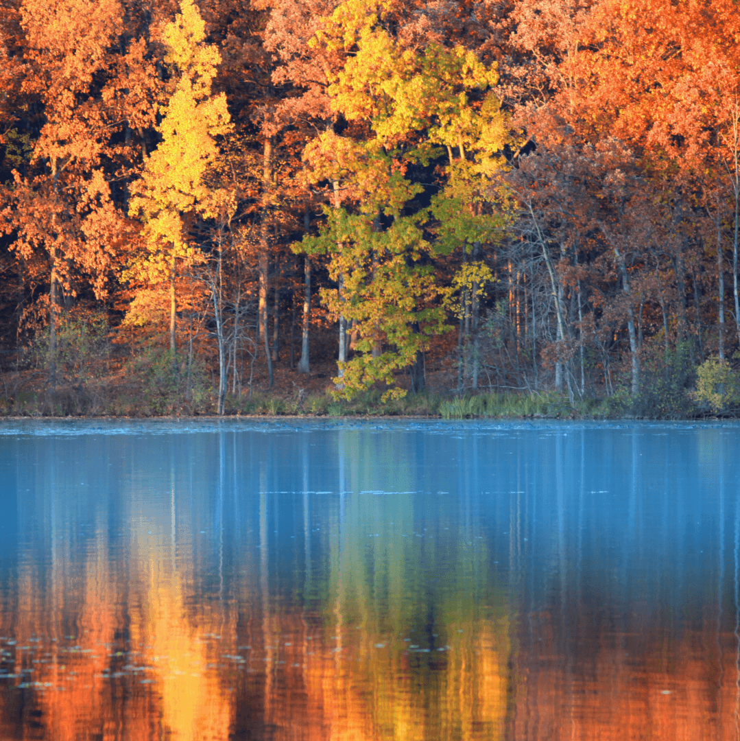 Fall Guide: NJ Hiking Trail