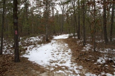 Wharton State Forest, Winter Hiking