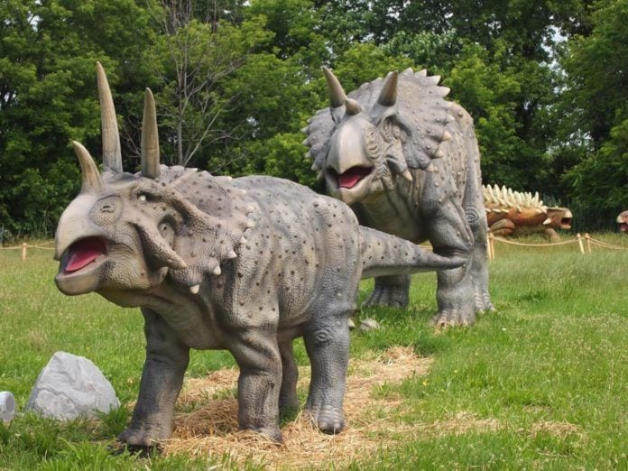 Field Station: Dinosaurs' New Home in Overpeck Park - Best of NJ