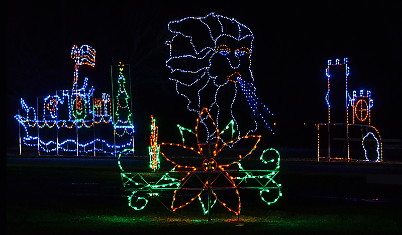 various shapes made from christmas lights