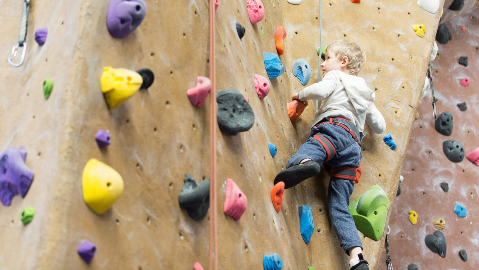 Plastic Wedding Bands >> The Best Indoor Rock Climbing Spots in NJ - Best of NJ: NJ Lifestyle Guides, Features, Events ...