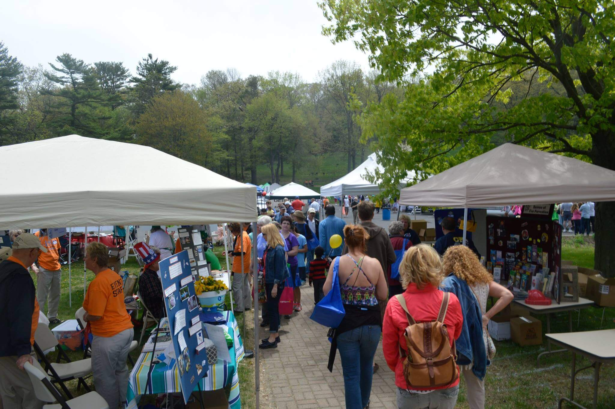 the best may festivals in new jersey best of nj nj lifestyle