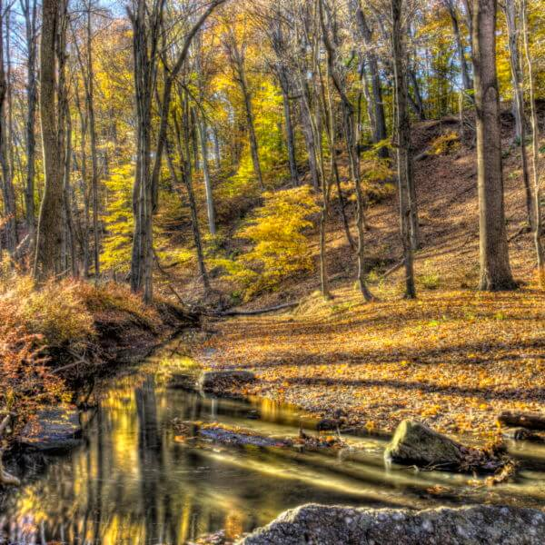 Best Hiking Trails in New Jersey
