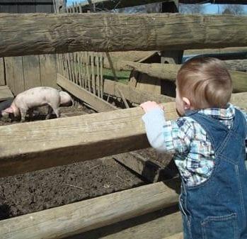 fall festivals, new jersey farms