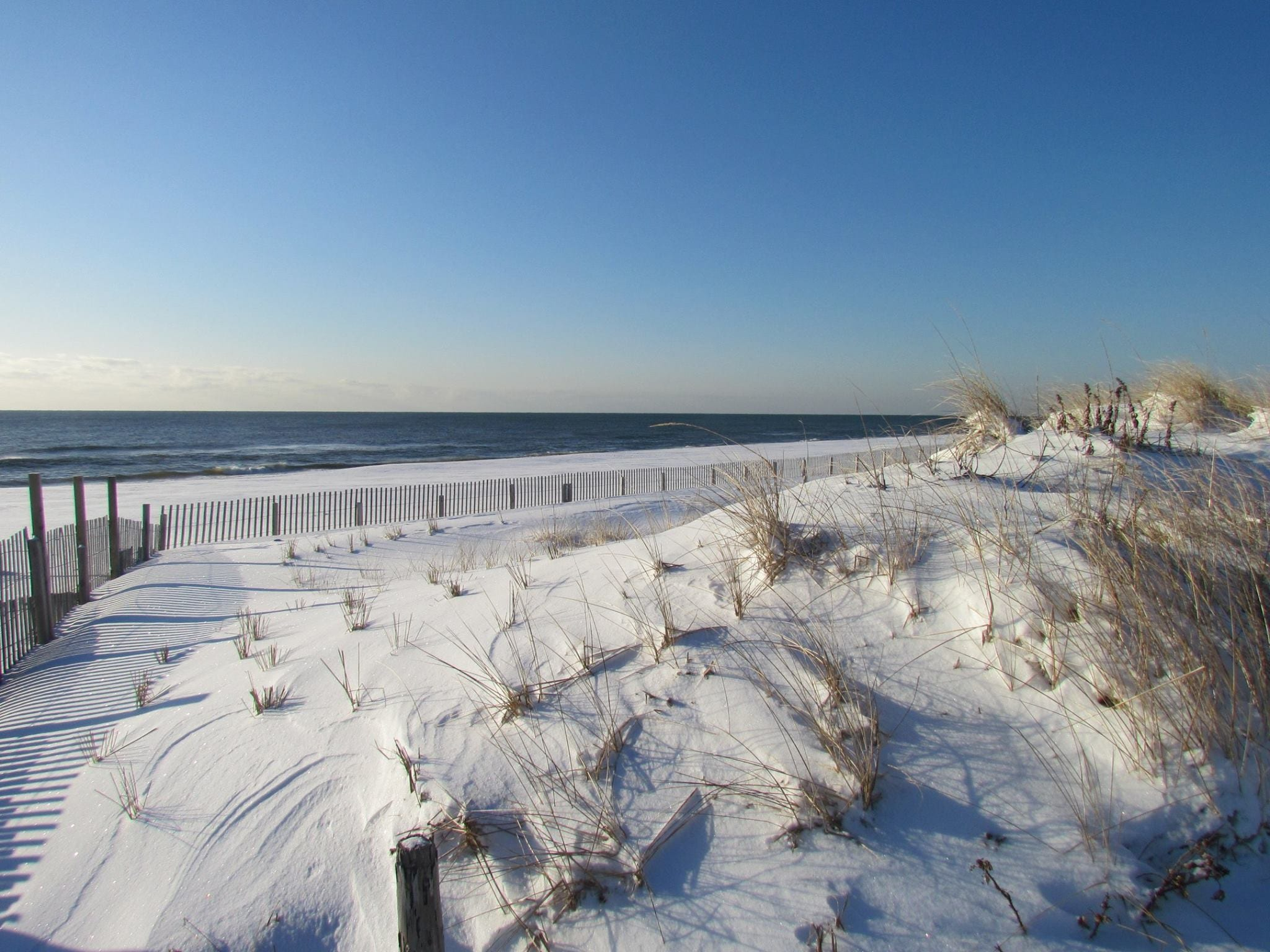 shoreline white sand beach with grass and fence, point pleasant shore town