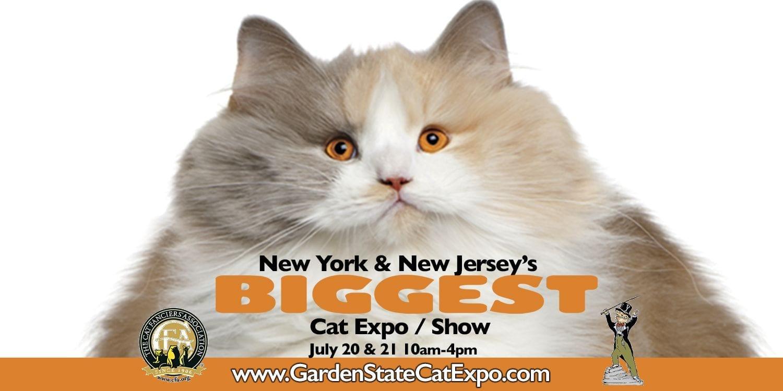 Cat Expo 2019