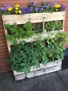 Small Space Gardening Example