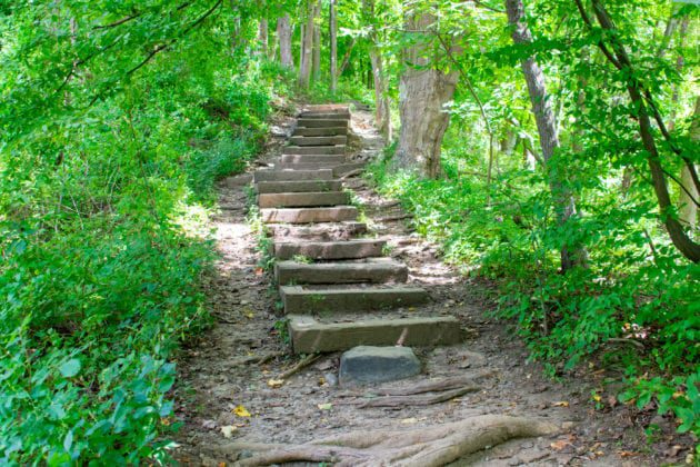Stairs Leading to Kittatiny Mountain Trail