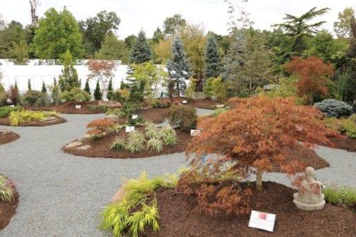 maple teaching garden