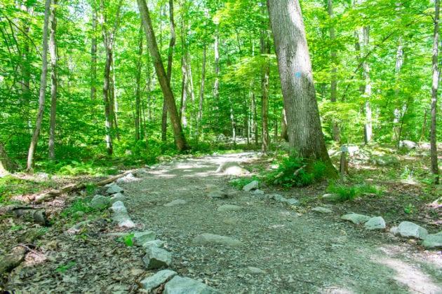 Pyramid Mountain Trail